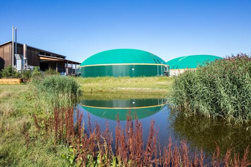 BioEnergie Düdingen AG