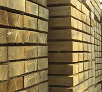 Holz für die energetische Unabhängigkeit der Schweiz